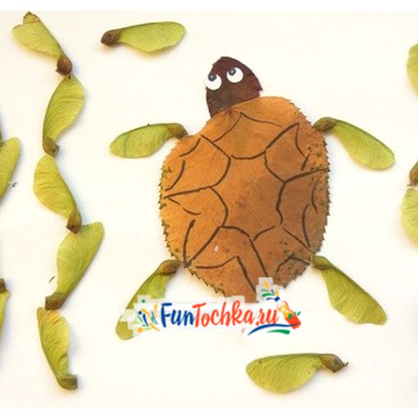 аппликации из осенних листьев черепаха